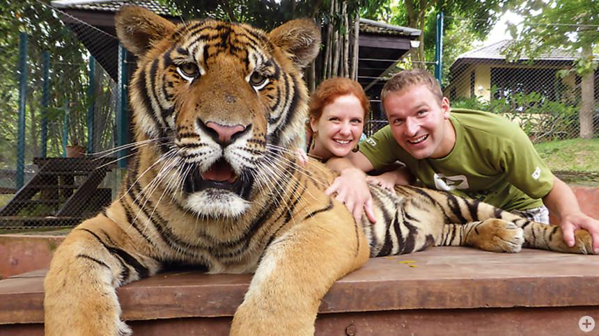 Sabine und Uli mit Tiger in Thailand.